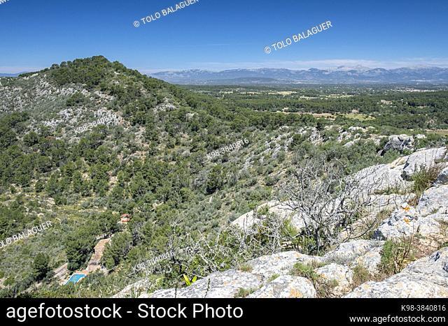Puig de Ses Bruixes and Puig den Claret, Llucmajor, Mallorca, Balearic Islands, Spain