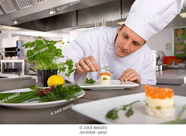 Chef garnishing gourmet food in commercial kitchen