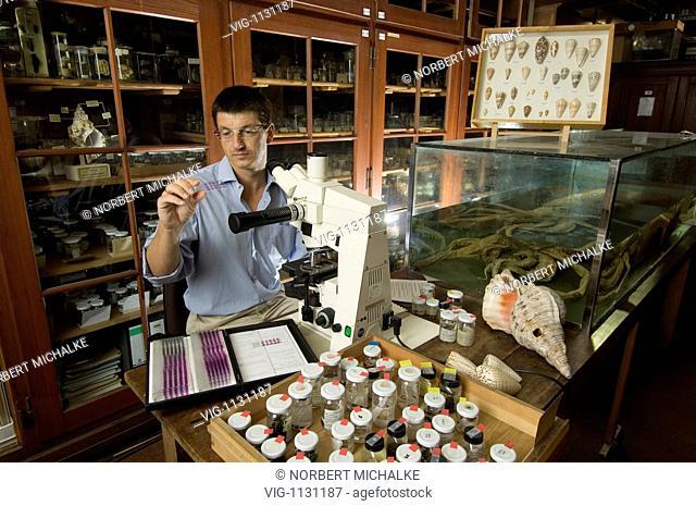 GERMANY, BERLIN, 04.07.2007 Dr. Matthias GLAUBRECHT, German Scientist, Museum fuer Naturkunde Leibniz Institute for Research on Evolution and Biodiversity at...