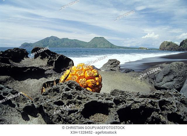 Pengajawa Beach, Flores island, Lesser Sunda Islands, Republic of Indonesia, Southeast Asia and Oceania