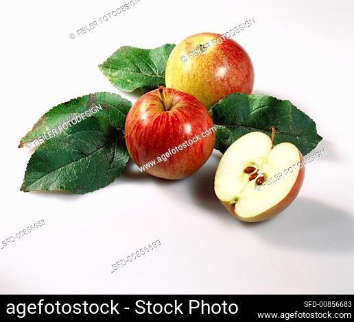 Apples with leaves (variety: Rheinischer Krummstiel)