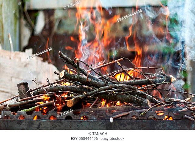 the hearth burn firewood and branches for coal
