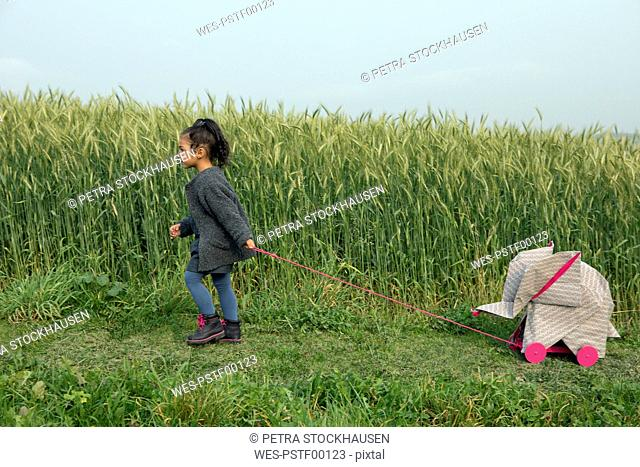 Little girl pulling origami elephant on rolls at field