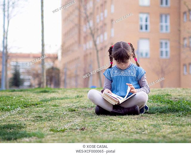 Little girl sitting on a meadow reading a book