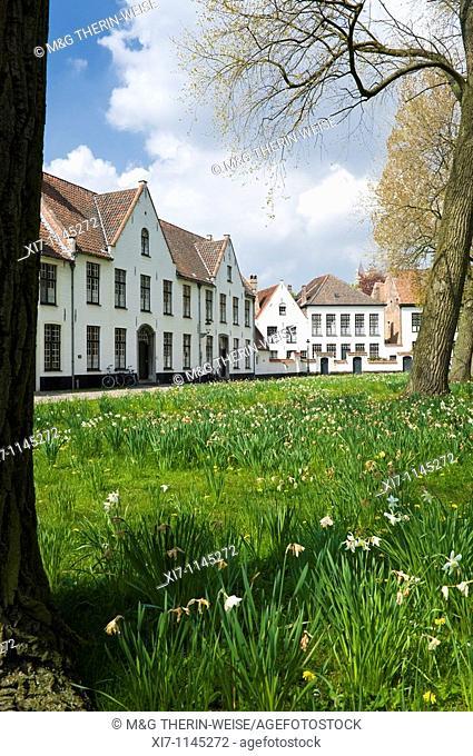 Bruges Beguinage Ten Wijngaerde, Historic centre of Bruges, Belgium, Unesco World Heritage Site