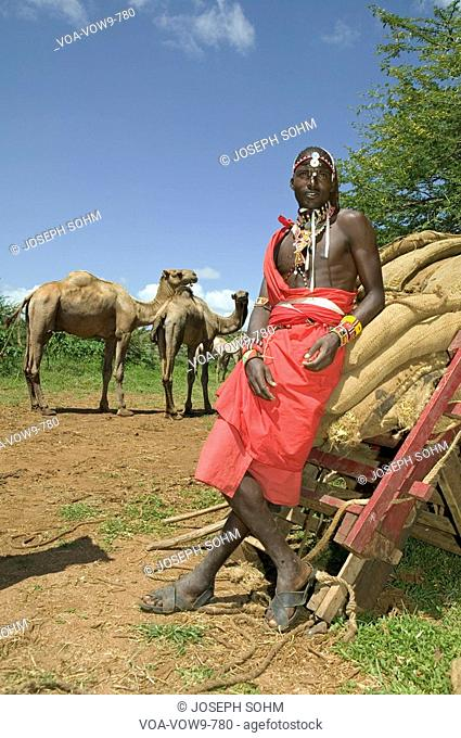 Portrait of Masai Warrior safari guide in traditional red toga and his camels at Lewa Wildlife Conservancy in North Kenya, Africa