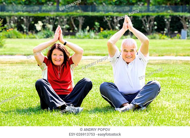 Happy Senior Couple Practising Yoga In Park