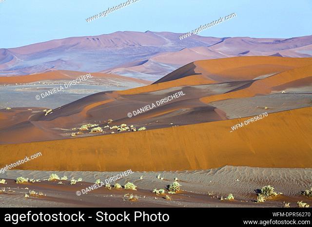 Dunes in Sossusvlei Area, Namib Naukluft Park, Namibia