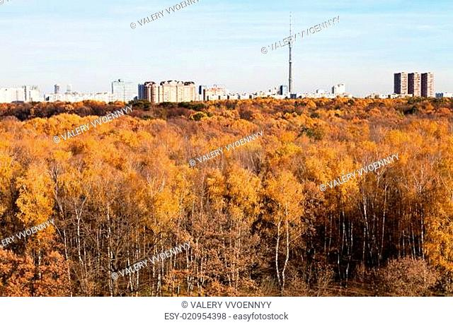 autumn view of TV tower, houses and yellow trees