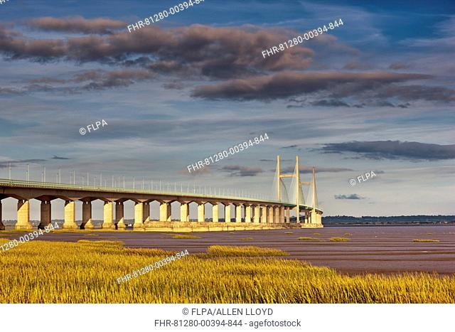 View of road bridge over river at sunset, viewed from Caldicot, Second Severn Crossing, River Severn, Severn Estuary, Monmouthshire, Wales, august