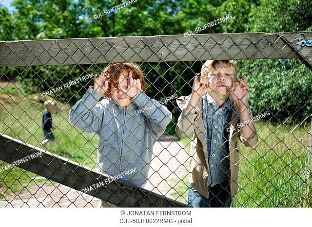 Children peering through chain fence