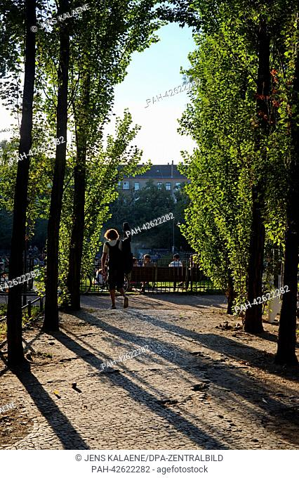 Broad-leafed trees stand on Boxhagener Platz in the Friedrichshain district in Berlin, Germany, 7 September 2013. Photo: Jens Kalaene | usage worldwide
