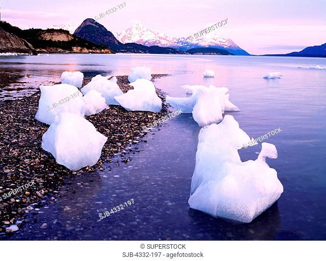 Icebergs from McBride Glacier Resting on Gravel Bar, Muir Inlet, Glacier Bay National Park, Alaska