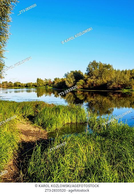 Poland, Swietokrzyskie Voivodeship, Sandomierz, Vistula River near Pieprzowe Mountains