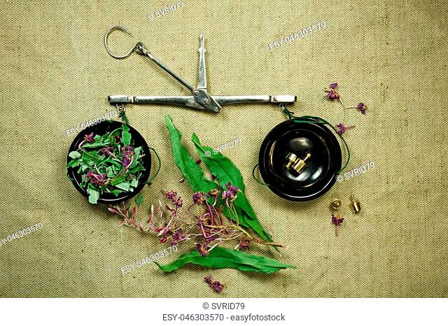 Fireweed.Dried herbs for use in alternative medicine.Herbal medicine, phytotherapy medicinal herbs.For preparation of infusions, decoctions, tinctures, powders