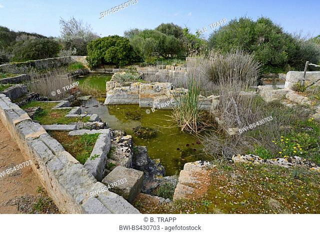 old MarÞs stone pit filled with water at a botanical Garden, Spain, Balearen, Menorca, Ciutadella