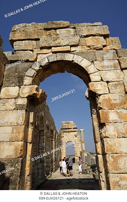Africa, North Africa, Morocco, Roman Ruins at Volubilis