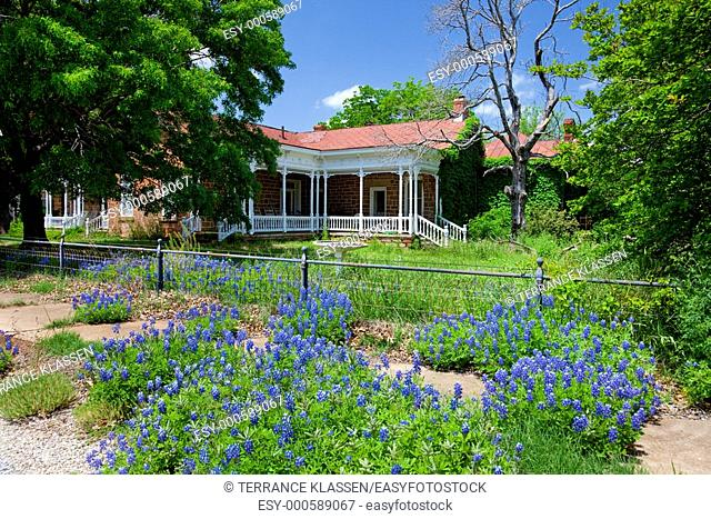 A home with bluebonnet wildflowers in Mason, Texas, USA