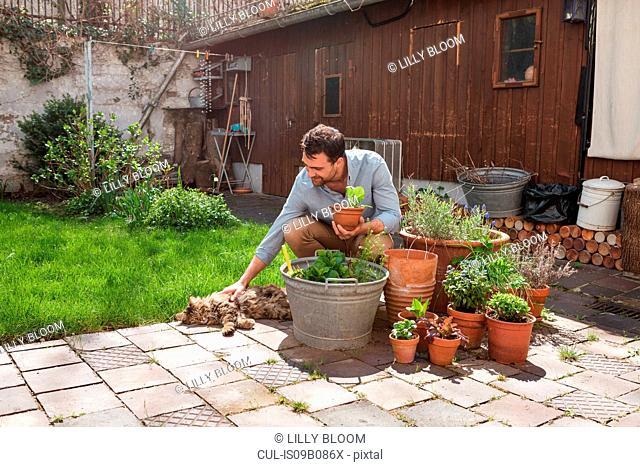 Man in garden tending to plants