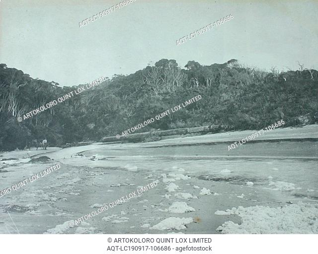 Photograph - Stranded Spar at Fraser River, King Island, 1887, In the background of this photograph of the mouth of the Fraser River
