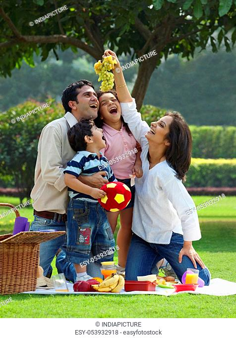 Family enjoying themselves at a picnic