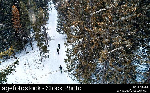 Aerial view of mountain bikers riding on road covered by snow in forest outdoors in winter