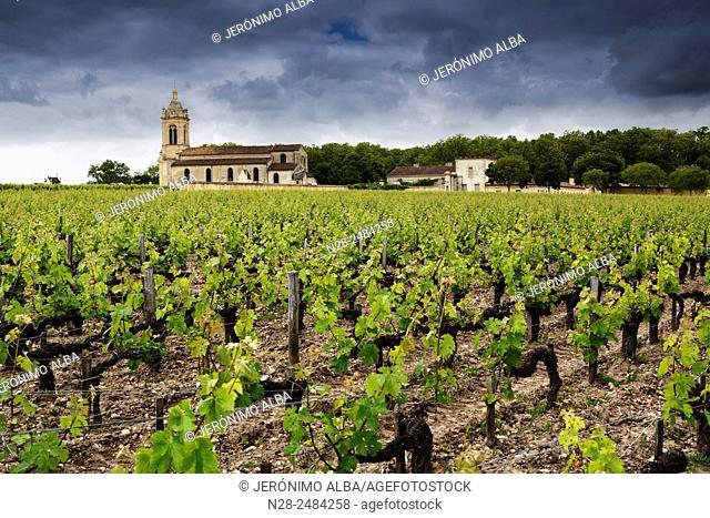 Chateau Margaux winery, Medoc vineyards, Bordeaux, Gironde, Aquitaine, France, Europe