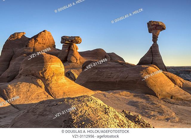 A setting sun intensifies the color of sandstone toadstool hoodoos in Paria Rimrocks Toadstool Hoodoos, Grand Staircase-Escalante National Monument, Utah, USA