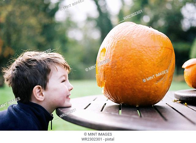 A small boy looking at a large pumpkin on a garden table