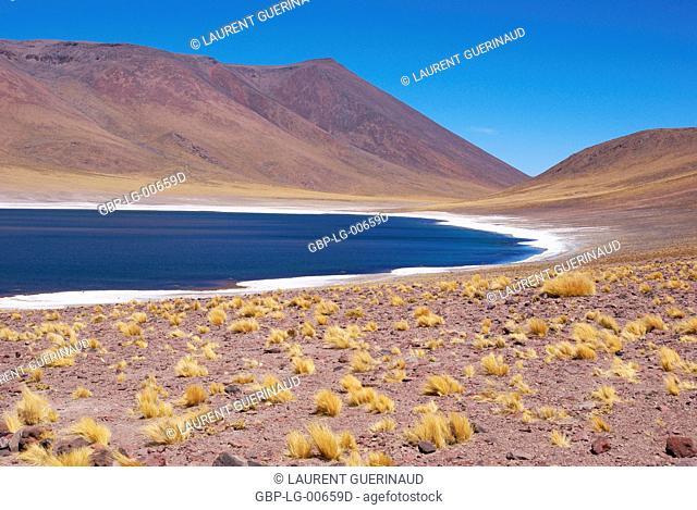 Laguna Miñiques, Los Flamencos Reserve National, Atacama Desert, Region of Antofagasta, Santiago, Chile