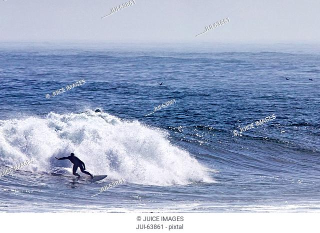 Surfer on surf board riding wave