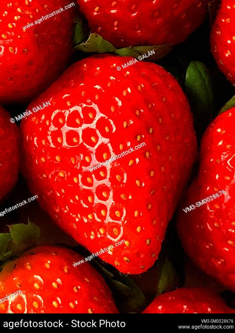 Strawberry. Close view
