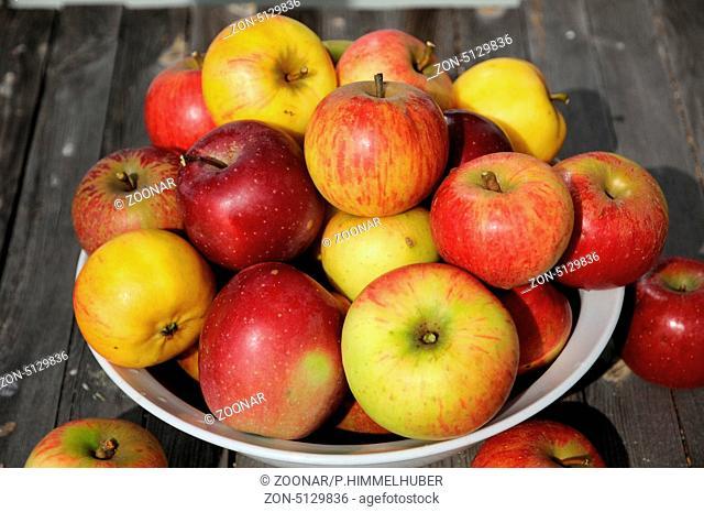 Schale mit Früchten verschiedener Sorten