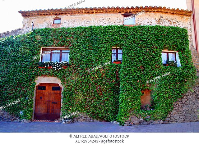 facade of housing with ivy, Verges, Girona, Catalonia, Spain