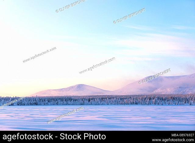 Finland, Lapland, winter, Pallastunturi, landscape