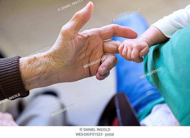 Baby holding finger of her great grandmother's hand