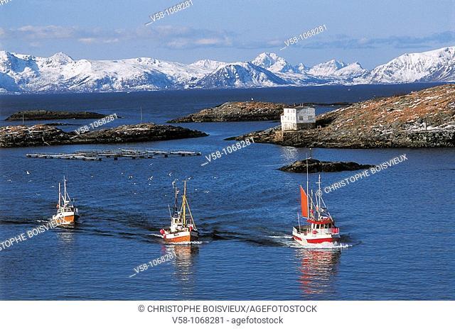 Norway, Nordland, Lofoten Islands, Fishing boats