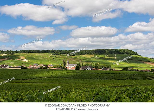 Avize, France - June 12, 2017: The small Champagne village Avize/Oger near Epernay with vineyards and hills on a summers day in France