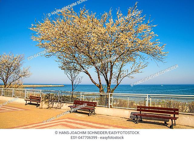 Ustka, Poland with beach promenade in spring