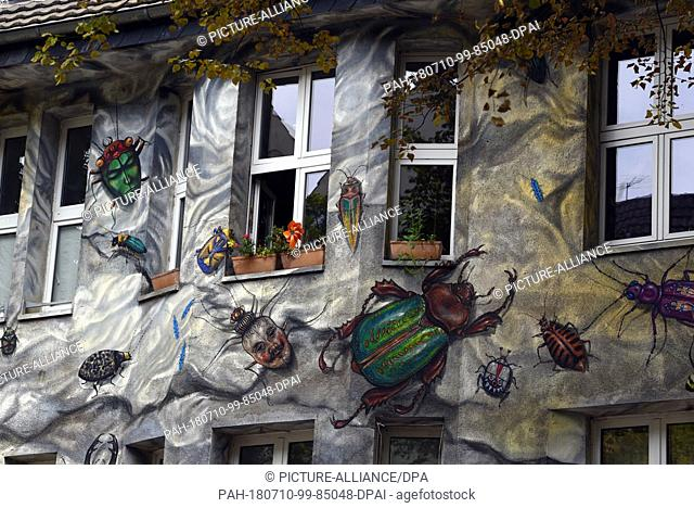 09 July 2018, Germany, Duesseldorf: A residential home covered with 'street art style' paintings of insects is located on the Kiefernstrasse in the district of...