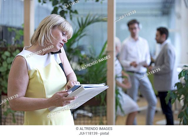 Businesswoman On Phone In Office With Meeting In Background