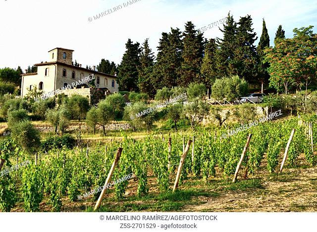 Tuscan countryside. San Giorgio, Poggibonsi, Siena, Tuscany, Italy, Europe,
