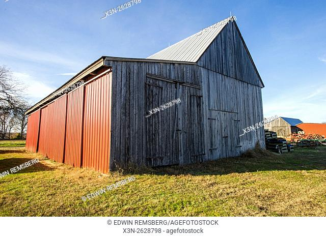 A wooden barn with one red side on a farm in Maryland