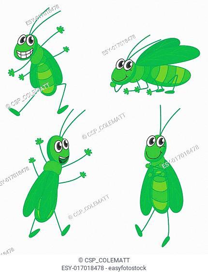 Four grasshoppers