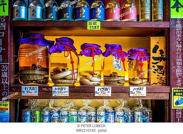 Jars of Habushu, Okinawan awamori-based liquor with a venomous habu snake inside, central Naha, Japan