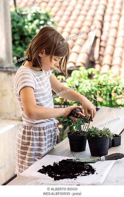 Girl repotting plant