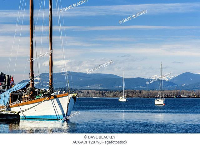 Sailboats moored near Cherry Point Marina near Cowichan Bay, British Columbia