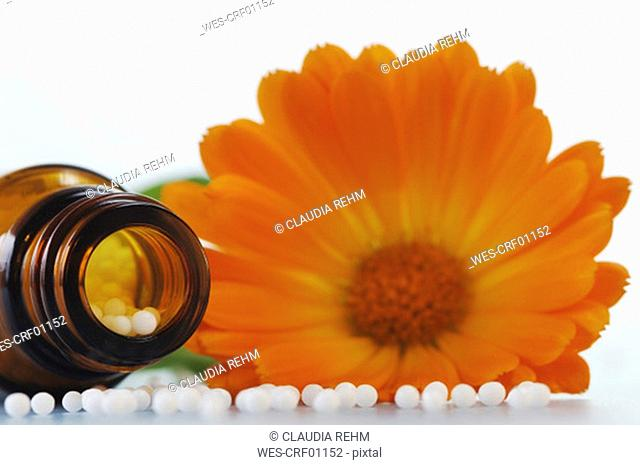 Medicinal flask with pills in front of calendula