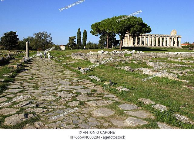 Italy, Campania, Paestum, the via Sacra and Athena temple