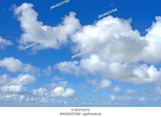 Cumulus clouds, Germany, Lower Saxony